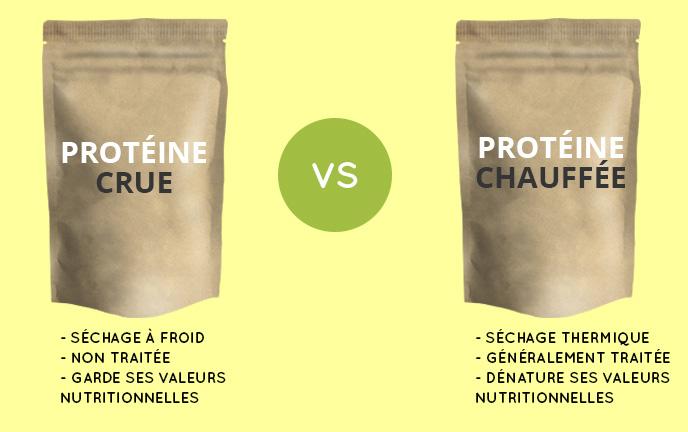 proteine-crue-vs-chauffe