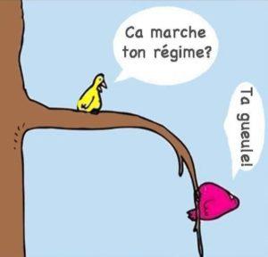 image-drole-regime